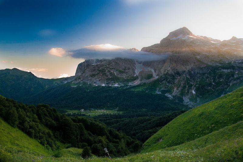 Животные Кавказа - список с фото и названиями
