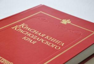 Красная книга Краснодарского края: редкие животные и растения