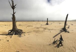Недостаток пресной воды - главная проблема современного мира